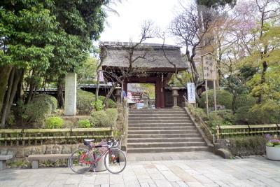 201004091139
